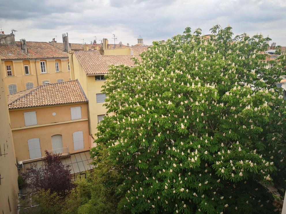 A louer meublé 2P  (centre ville d' Aix en Provence)