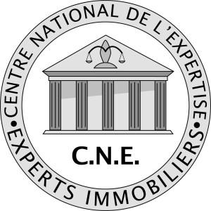 logo-CNE fond blanc